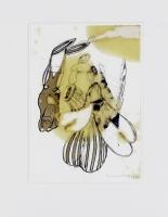 1999, Fett, Farbstift, Fineliner, Tippex, Papier, 21 x 29,5 cm